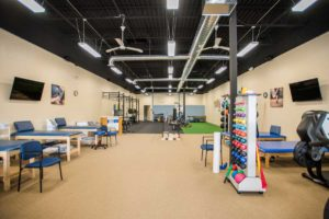 Physical Therapy Brick NJ