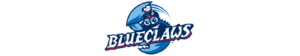 Official Physical Therapy Provider for the Lakewood Blueclaws
